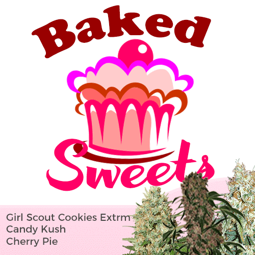 Baked Sweets Feminized Cannabis Seeds Mixpack