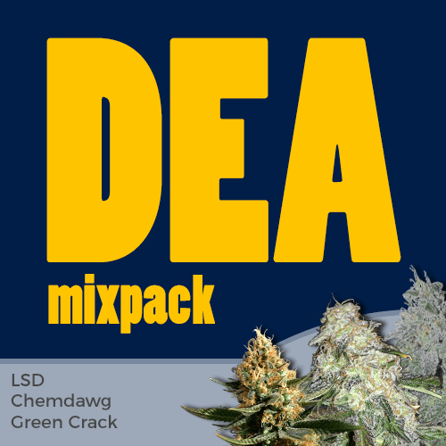 DEA Feminized Cannabis Seeds Mixpack