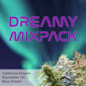Dreamy Feminized Cannabis Seeds Mixpack