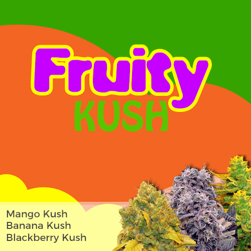 Fruity Kush Feminized Cannabis Seeds Mixpack